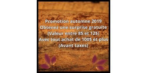 Promotion automne 2019