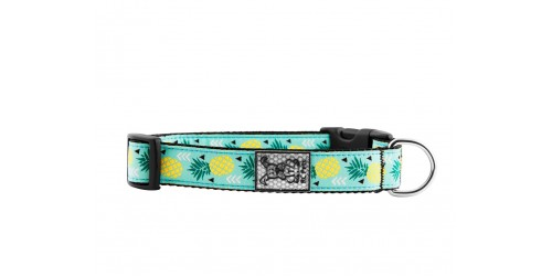 RcPet collier Pineapple Parade